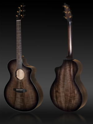 Breedlove Customshop Shallow Concert