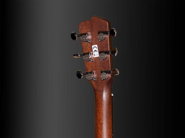 Breedlove Custom Concerto Bearclaw